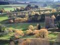 Trees and farmland near Gisborne