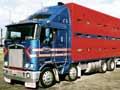 Modern stock truck, 2003