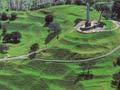 Maungakiekie (One Tree Hill), Tāmaki-makau-rau