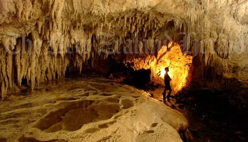 Nīkau Cave