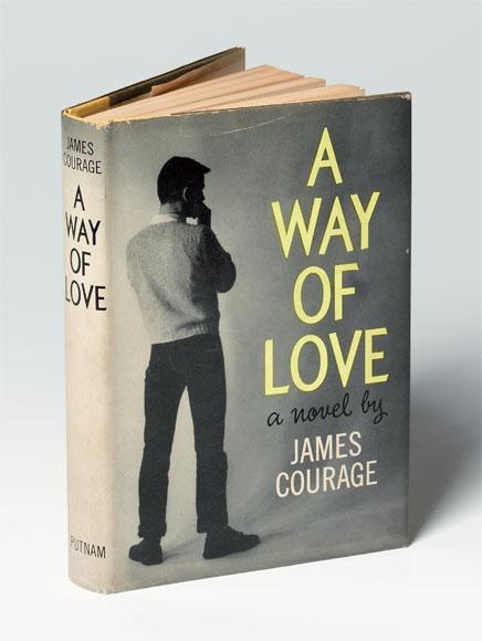 Gay novel