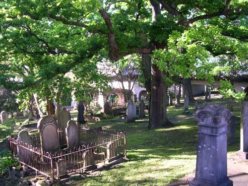 Symonds Street Cemetery, Auckland