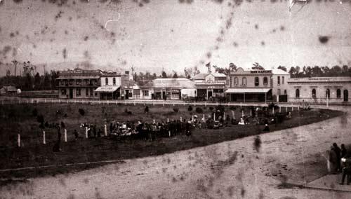 Native Land Court, Palmerston North