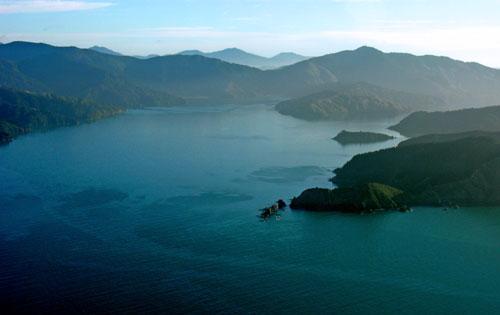 Horahora Kākahu Island, Port Underwood