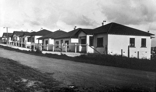 Grey Lynn council houses