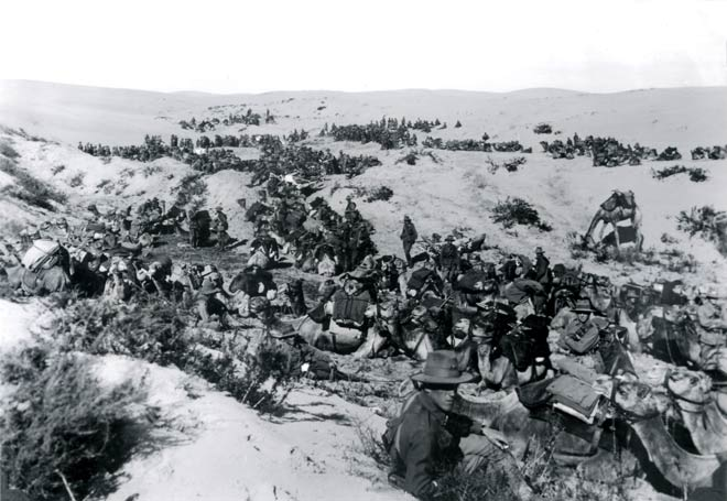 The Imperial Camel Corps in Palestine