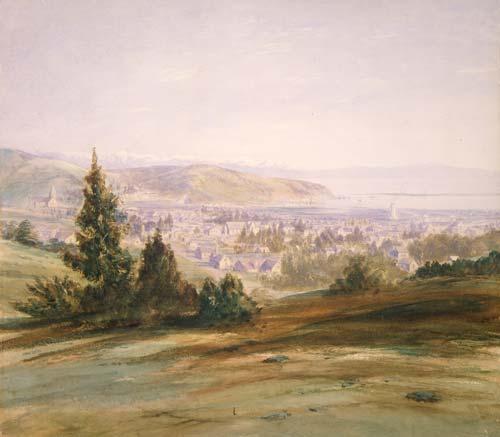 Nelson city