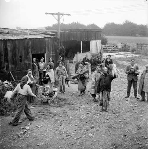 Maori War Effort Organisation, 1943
