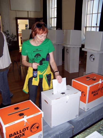 Casting a special vote, 2008