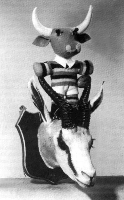 Springbok trophy, 1956