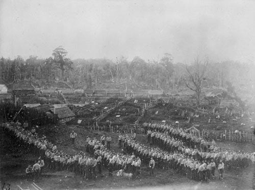 Government troops at Parihaka