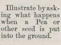 1881 lesson plans