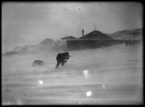 Mawson expedition, Adélie Land