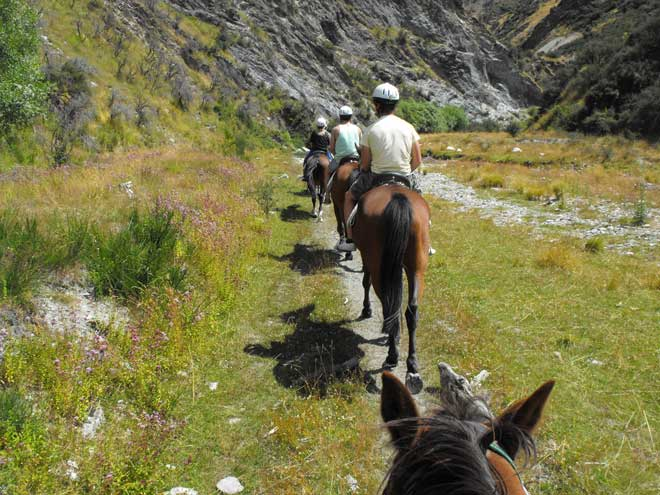 Equestrian activities: horse trekking