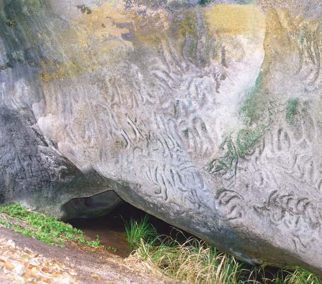 Moriori rock carvings chatham islands te ara