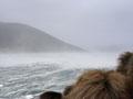 Storm, Campbell Island