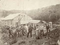 German expedition on Auckland Island