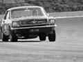 Mustang versus Mini, Levin, 1969