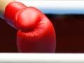 Women boxers, 2012