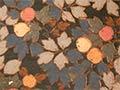 Wallpaper fashions