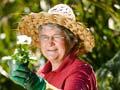 Gardener Dorothy Hood, 2010
