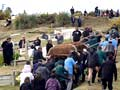 Burial service, Taupiri, 2011