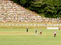 Cricket match at Pukekura Park, 2007