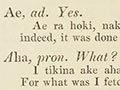 William Williams's Māori dictionary, 1844