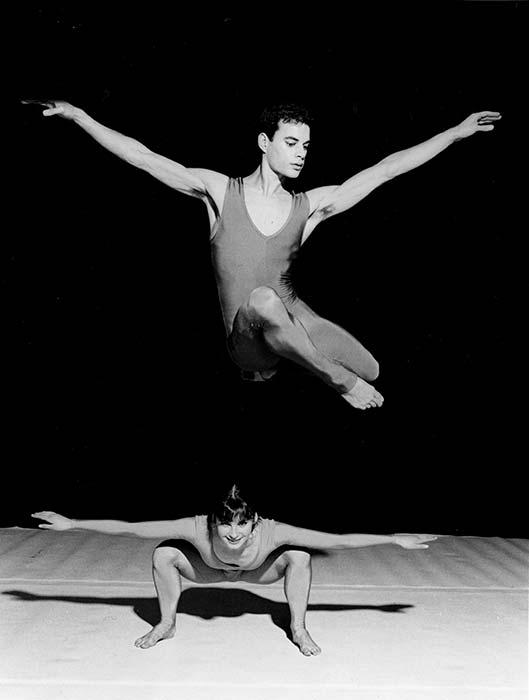 Limbs, 1978