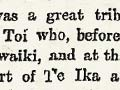 'Sketches of ancient Maori life and history', 1894