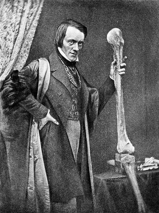 Richard Owen with moa bones