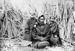 Wiremu Tamihana Tarapipipi Te Waharoa and family