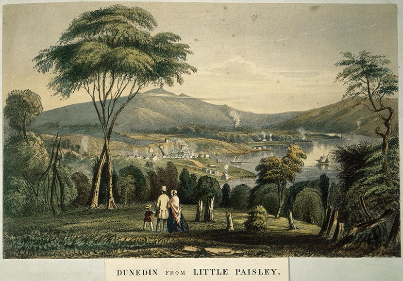 View of Dunedin from 'Little Paisley'