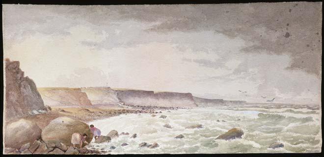 Taranaki cliffs