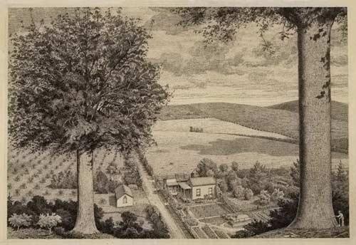 Julius Geissler's farm, Warkworth, North Auckland, 1918