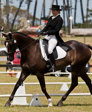 Christen Hayde on Tandarra Sweet As performing dressage, December 2011