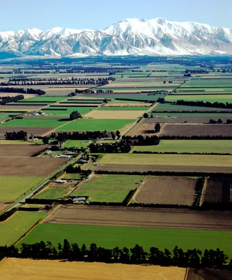 The Canterbury Plains