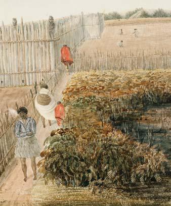 Potato gardens, 1840s