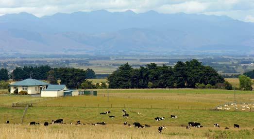 Manawatū farmland and the Tararua Range