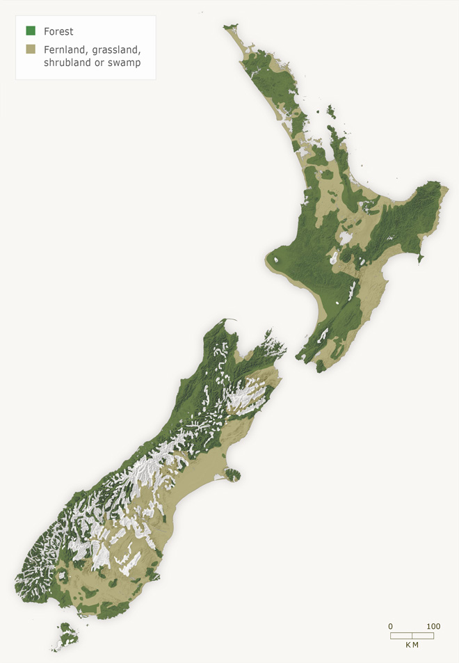 New Zealand vegetation cover around 1840