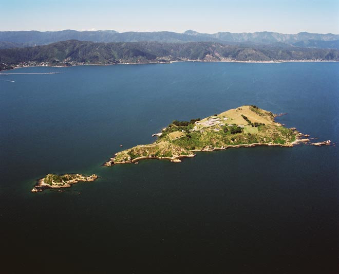 Islands in Wellington Harbour
