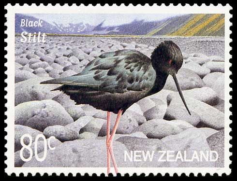 Black stilt stamp
