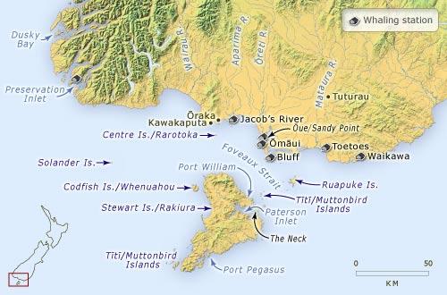 Foveaux Strait