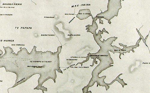 Māori Auckland map, detail
