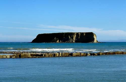 Motunau Island