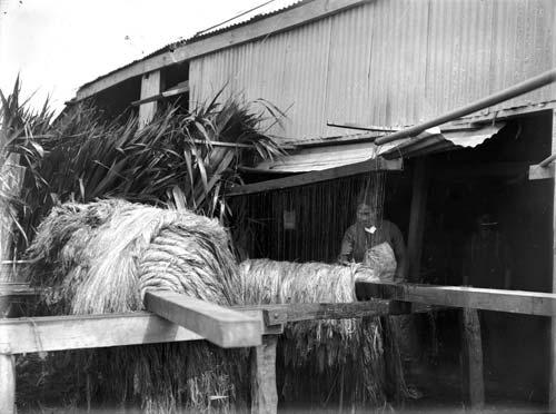 Washing flax fibre