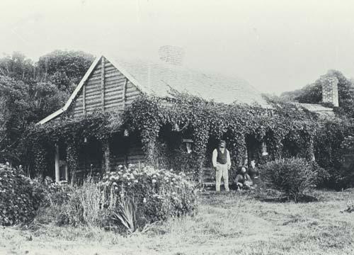 Ponga house