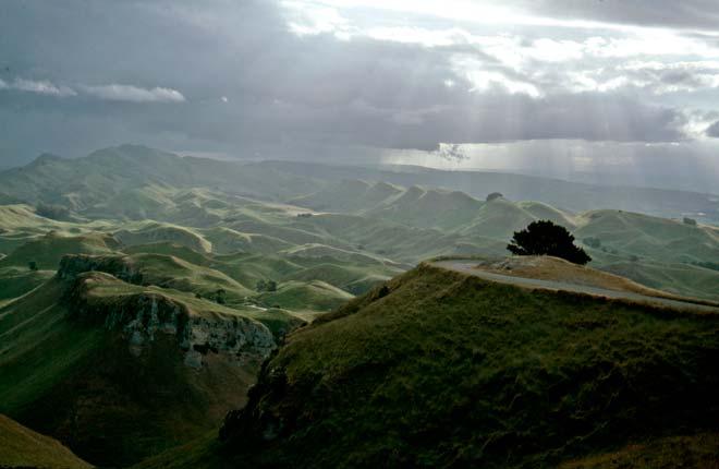 Papatūānuku in the landscape