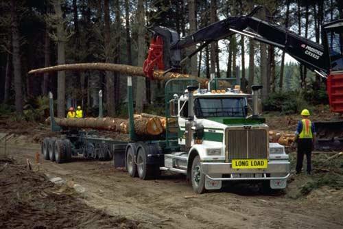 Modern logging truck