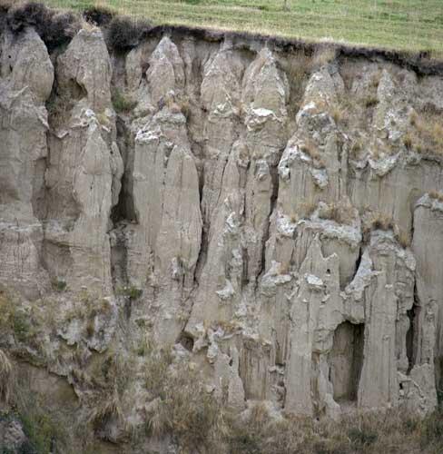 Deep loess soils te ara encyclopedia of new zealand for Soil encyclopedia